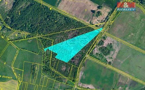 Prodej lesa, 18183 m², Mažice, okres Tábor
