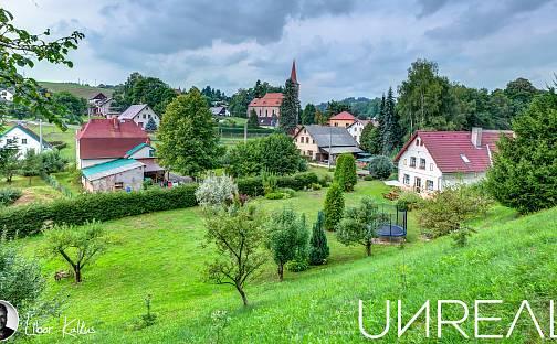 Prodej domu 430 m² s pozemkem 5827 m², Čermná, okres Trutnov