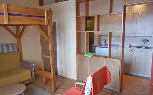 Pronájem bytu 1+kk, 29 m², Praha 10 - Záběhlice