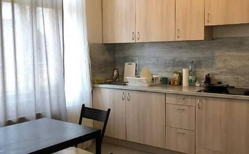 Pronájem bytu 1+1 40m², Táborská, Praha 4 - Nusle