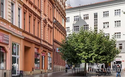 Prodej domu 1305 m² s pozemkem 1305 m², Svobody, Cheb