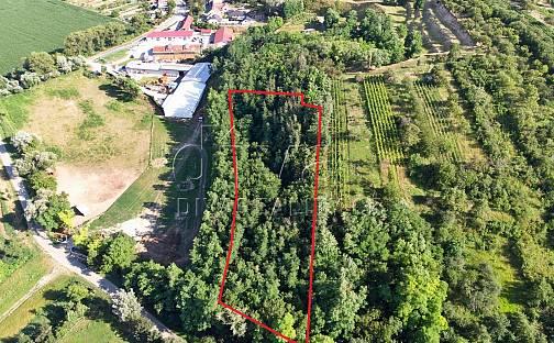 Prodej komerčního pozemku, 7285 m², Velké Pavlovice, okres Břeclav