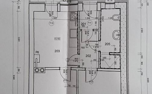 Prodej bytu 2+1, 50 m², Brno - Černovice