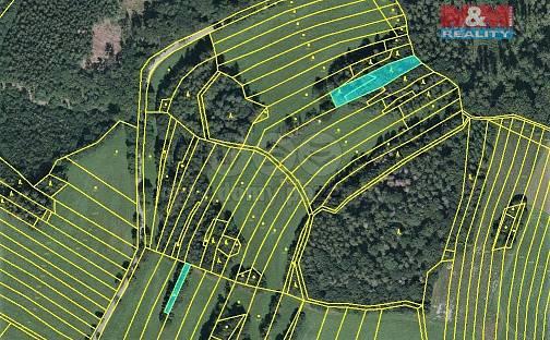 Prodej lesa 420m², Vysoká, okres Svitavy