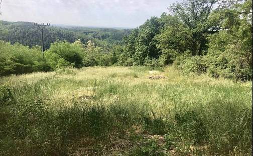 Prodej stavebního pozemku, 2500 m², Nebovidy, okres Brno-venkov