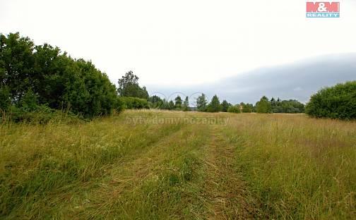 Prodej komerčního pozemku, 12000 m², Mariánské Lázně - Úšovice, okres Cheb