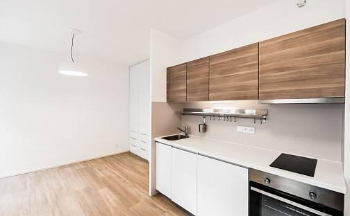Pronájem bytu 1+kk, 28 m², Lucemburská, Praha 3 - Žižkov
