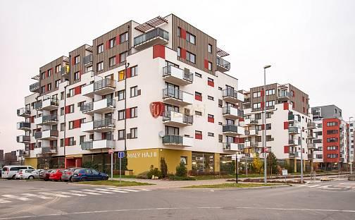Prodej bytu 1+kk, 41 m², Kryšpínova, Praha 10 - Dolní Měcholupy