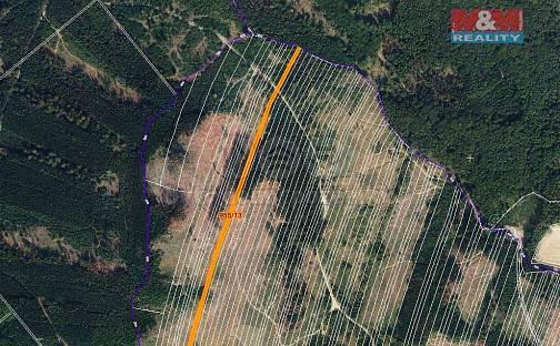 Prodej lesa, 5695 m², Nová Hradečná, okres Olomouc