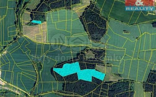 Prodej lesa, 21886 m², Úlehle, okres Strakonice