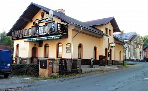 Prodej ubytovacího objektu, 239 m², Údolní, Desná - Desná I, okres Jablonec nad Nisou