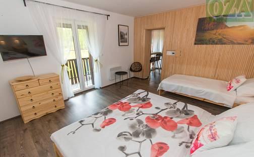 Prodej bytu 1+1, 44 m², Dlouhý Bor 33/4, Nová Pec, okres Prachatice