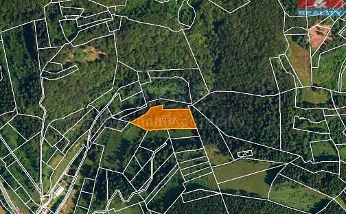 Prodej louky, 5054 m², Halenkov, okres Vsetín