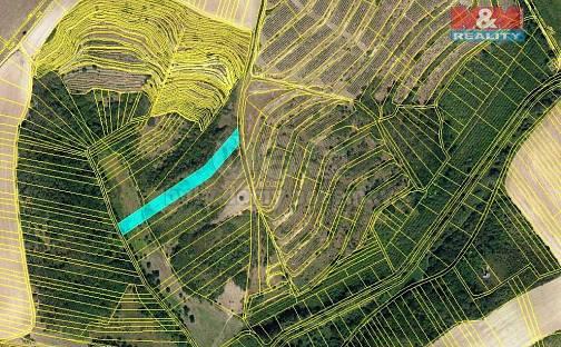 Prodej lesa, 3415 m², Hustopeče, okres Břeclav