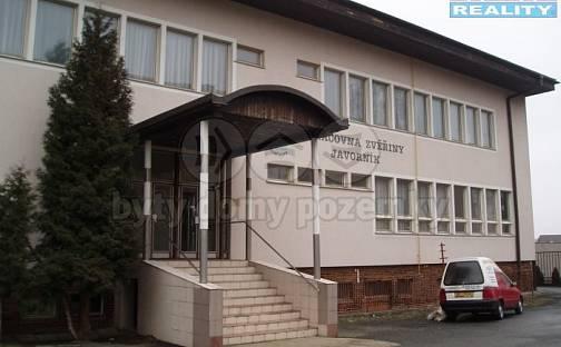 Prodej výrobních prostor, 3042 m², Javorník, okres Jeseník