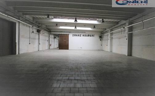Pronájem skladovacích prostor, 1539 m², Kolín