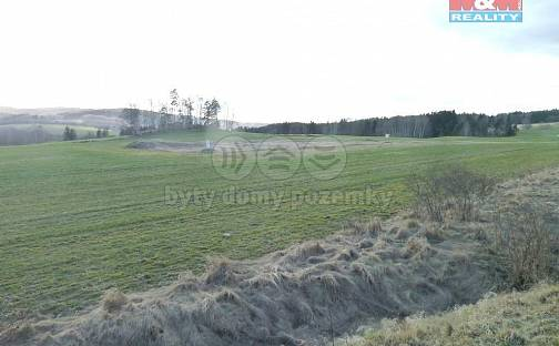 Prodej komerčního pozemku, 10000 m², Dolní Žandov, okres Cheb