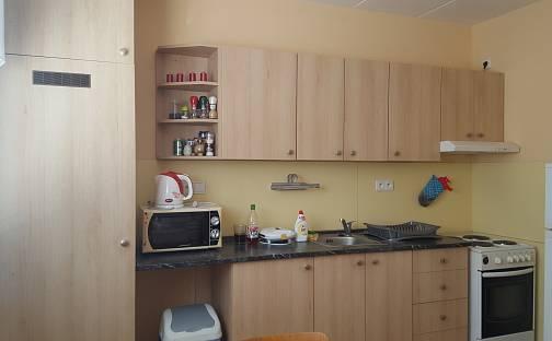 Pronájem bytu 1+1 37m², Manětínská, Plzeň - Bolevec