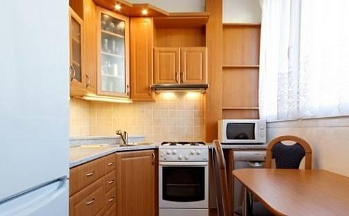 Pronájem bytu 2+1, 56 m², Slavíčkova, Brno - Lesná