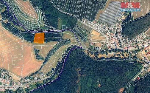 Prodej lesa, 7247 m², Malá Roudka, okres Blansko