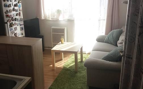 Pronájem bytu 1+1, 35 m², Hvozdnická, Praha 10 - Strašnice