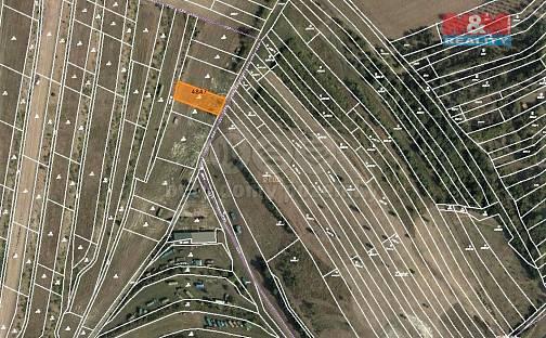 Prodej louky 907m², Starovičky, okres Břeclav