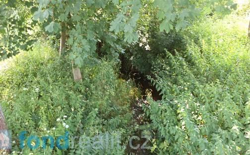 Prodej pozemku, 154 m², Staré Buky, okres Trutnov