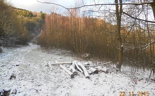 Prodej louky, 10514 m², Šimonovice, okres Liberec