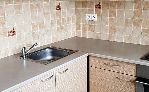 Pronájem bytu 2+1, 50 m², Zahradnictví, Duchcov, okres Teplice