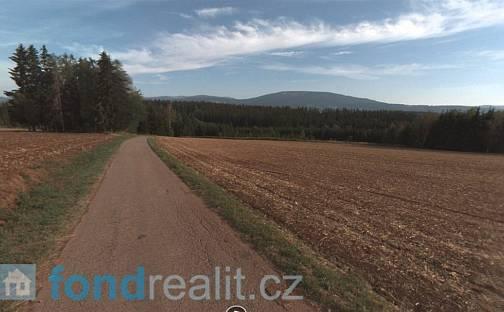 Prodej pozemku, 715 m², Rudník, okres Trutnov