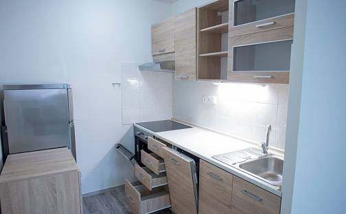 Pronájem bytu 2+1, 60 m², Roudnická, Praha 8 - Střížkov