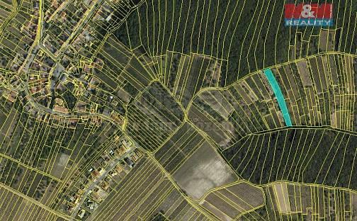Prodej pole, 5779 m², Němčičky, okres Břeclav