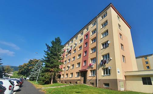 Prodej bytu 2+1 54m², Maxe Švabinského, Most