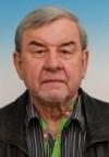 Ing. Stanislav Václavovic