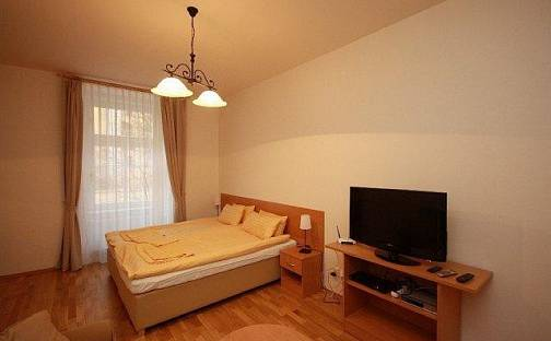 Pronájem bytu 1+1, 55 m², Mánesova, Praha 2 - Vinohrady