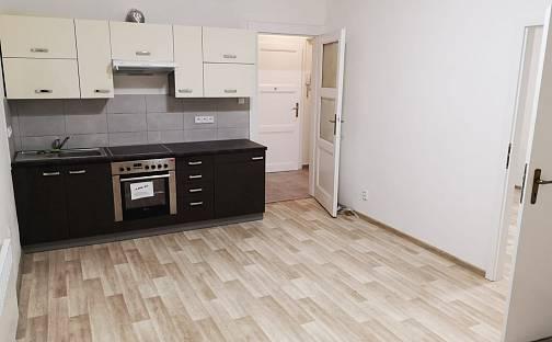 Pronájem bytu 2+kk 46m², V domově, Praha 3 - Žižkov