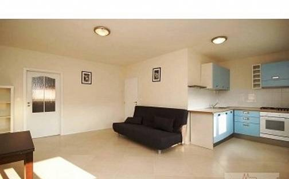 Pronájem bytu 2+kk, 56 m², Podolská, Praha 4 - Braník