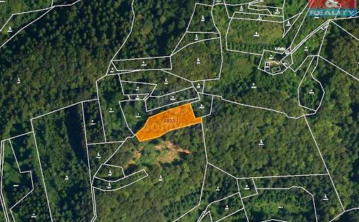 Prodej lesa 3244m², Halenkov, okres Vsetín