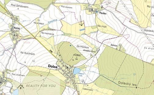Prodej pole, 5001 m², Dolce, okres Plzeň-Jih