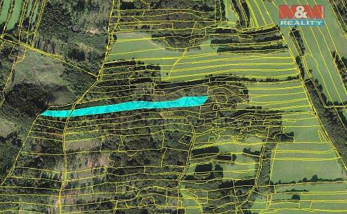 Prodej lesa, 10970 m², Lešná, okres Vsetín