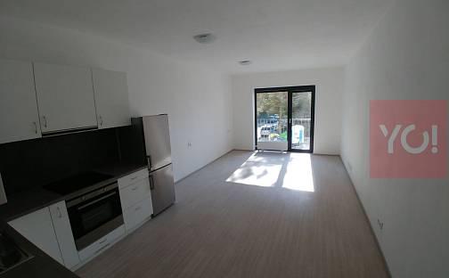 Pronájem bytu 1+kk, 33 m², Pasecká, Zlín