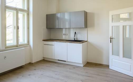 Pronájem bytu 1+kk, 24.9 m², Pod Karlovem, Praha 2 - Vinohrady