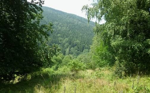 Prodej pozemku, 3407 m², Merklín, okres Karlovy Vary
