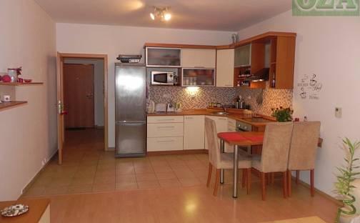 Pronájem bytu 3+kk, 65 m², Jana Palacha, Pardubice - Zelené Předměstí