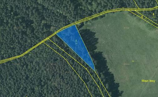Prodej lesa, 2040 m², Provodín, okres Česká Lípa