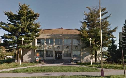 Prodej obchodních prostor, 1700 m², Dělnická, Havířov, okres Karviná