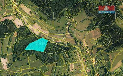 Prodej lesa 13656m², Huslenky, okres Vsetín