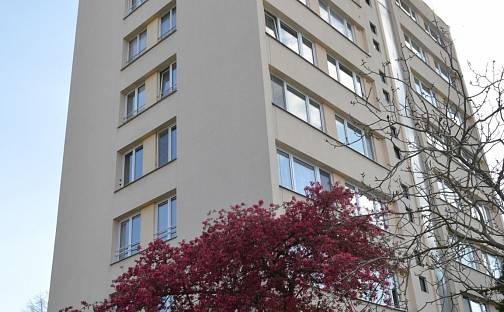 Prodej bytu 3+1 56m², Mánesova, Poděbrady - Poděbrady II, okres Nymburk