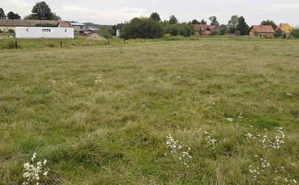Prodej stavebního pozemku 6005m², Lípa nad Orlicí, okres Rychnov nad Kněžnou