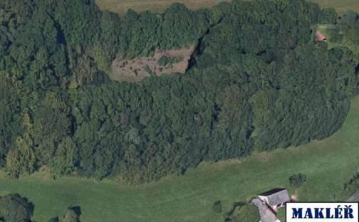 Prodej lesa, 27294 m², Liberec - Liberec XXIV-Pilínkov